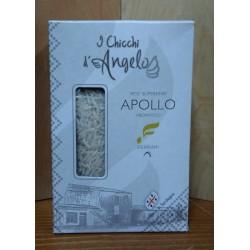 RIso Apollo