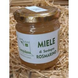 Miele di Sardegna-Campidano-Rosmarino